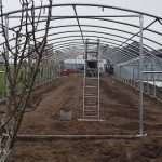 STOREX greenhouse frames