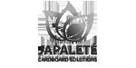 Japalete-logo